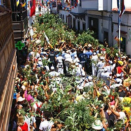 La fête de La rama d'Agaete, par Antonio Hernández, La Rama, one of the most famous celebration of the Canaries, http://www.agaete.es/