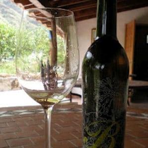 Weinflasche aus der Bodega Los Berrazales im Tal von Agaete, vin racé elaboré au Nord de Grande Canarie à partir de Listán noire, winery in the Canary Islands, http://bodegalosberrazales.com/
