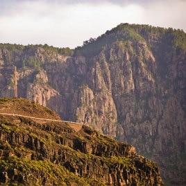 Tamadaba Natural Park by David González, la pinède du Tamadaba dans le nord-ouest de Grande Canarie, Strasse von Agaete bis El Risco