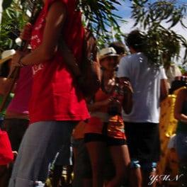 La fiesta de la rama por Yaiza Mederos, Volksfest in Gran Canaria, La Rama, the canarian feast of all feasts, http://www.agaete.es/