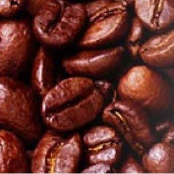 Le café de Agaete, the only coffee grown up in Europe, Kaffee aus den Kanarischen Inseln, café arábica typica producido en las islas canarias, http://www.cafedeagaete.es/